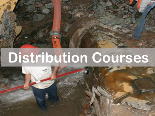Distribution Courses