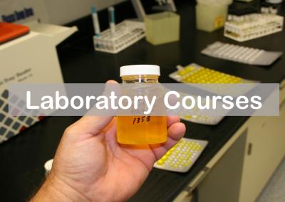 Laboratory Courses